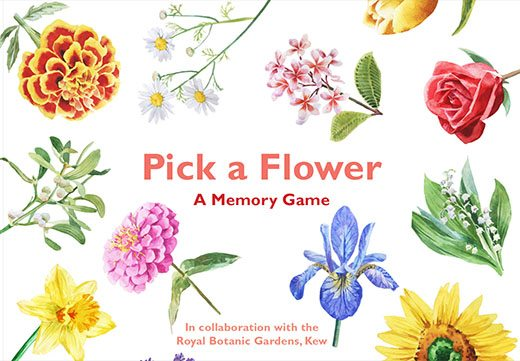 Pick a Flower - Product Thumbnail