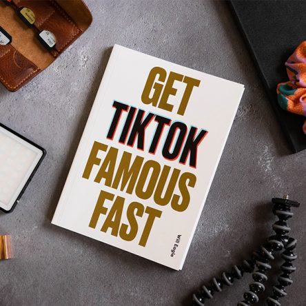 10 Ways to Get TikTok Famous Fast - Blog Image