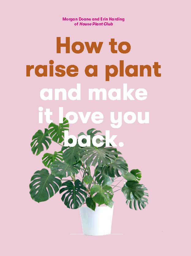 How to Raise a Plant - Product Thumbnail