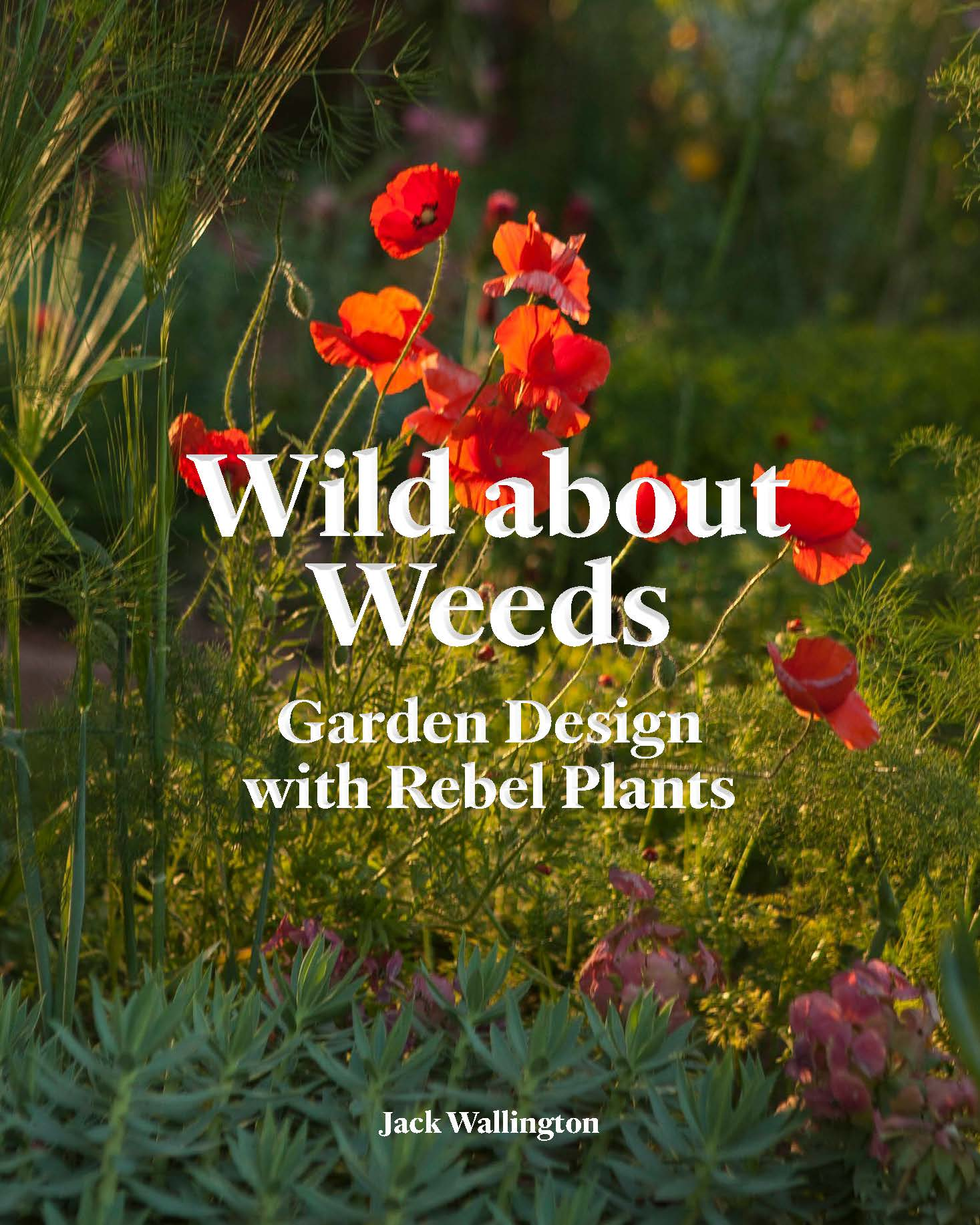 Wild About Weeds - Product Thumbnail