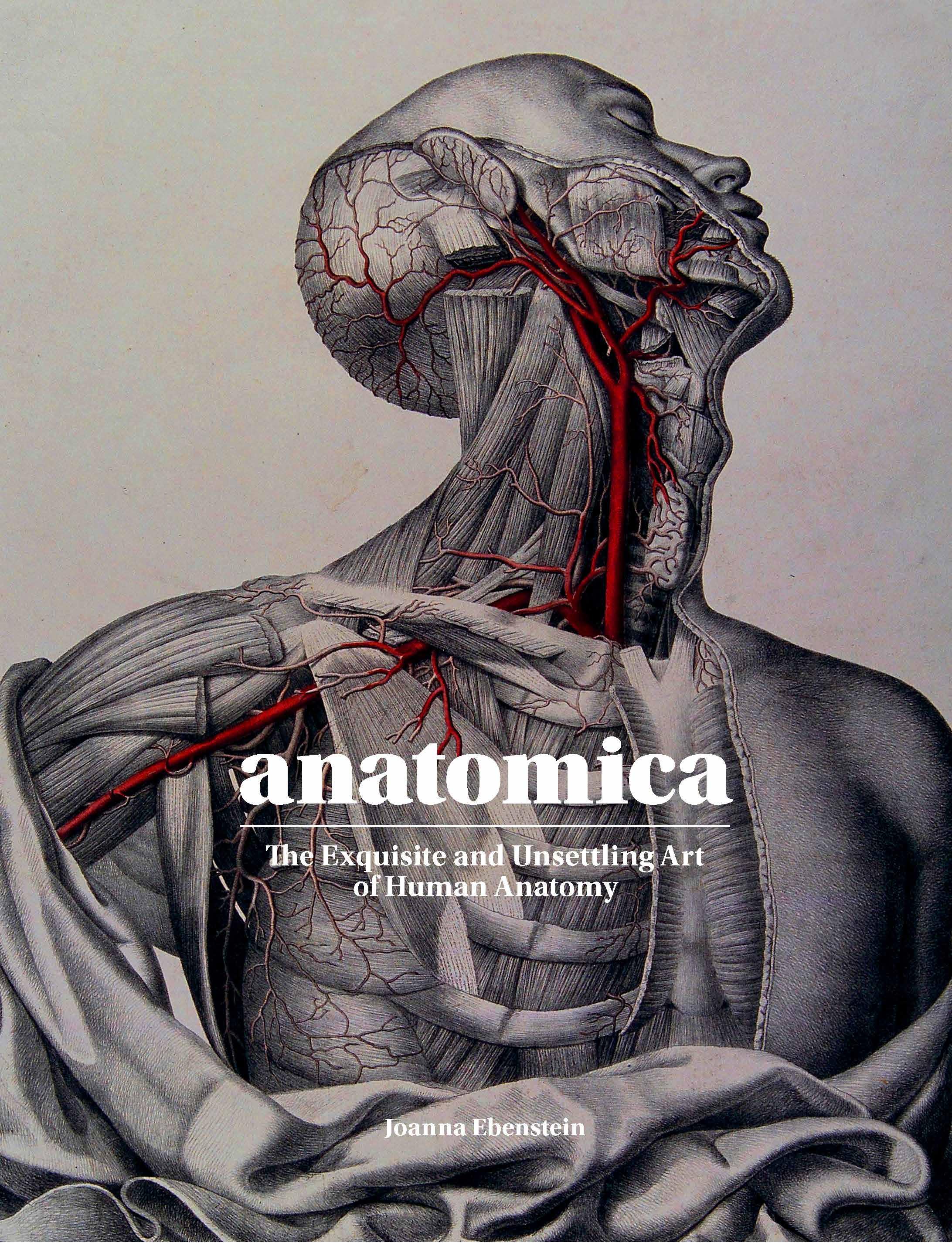 Anatomica - Product Thumbnail