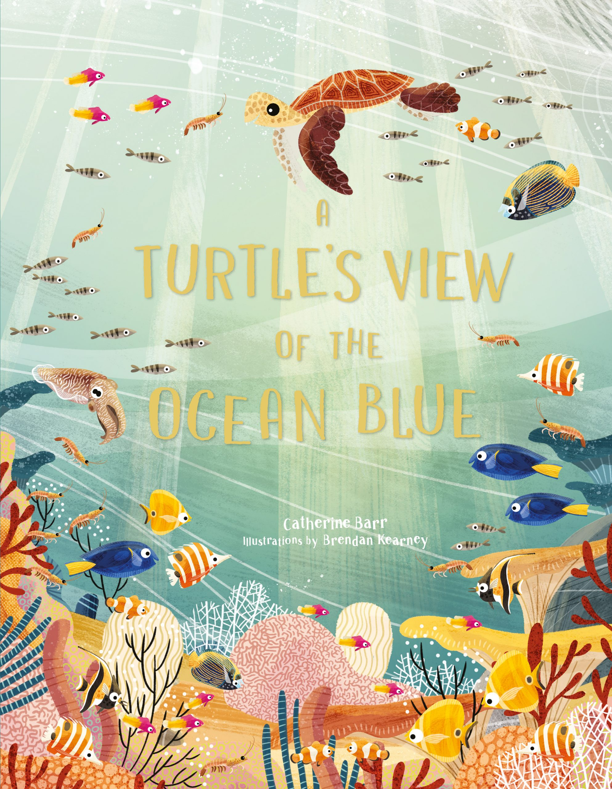A Turtle's View of the Ocean Blue - Product Thumbnail