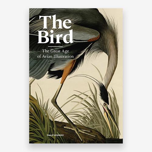 The Bird - Product Thumbnail