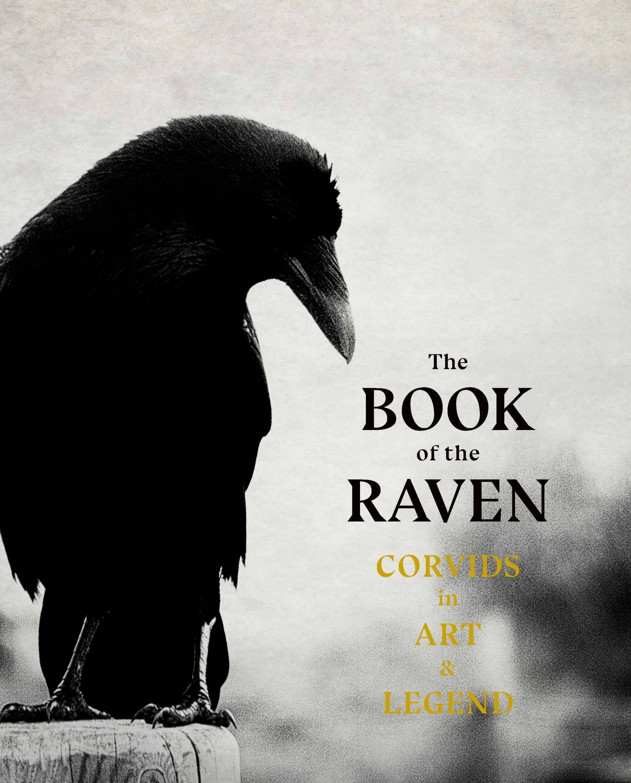 The Book of the Raven - Product Thumbnail