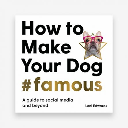 How To Make Your Dog #Famous