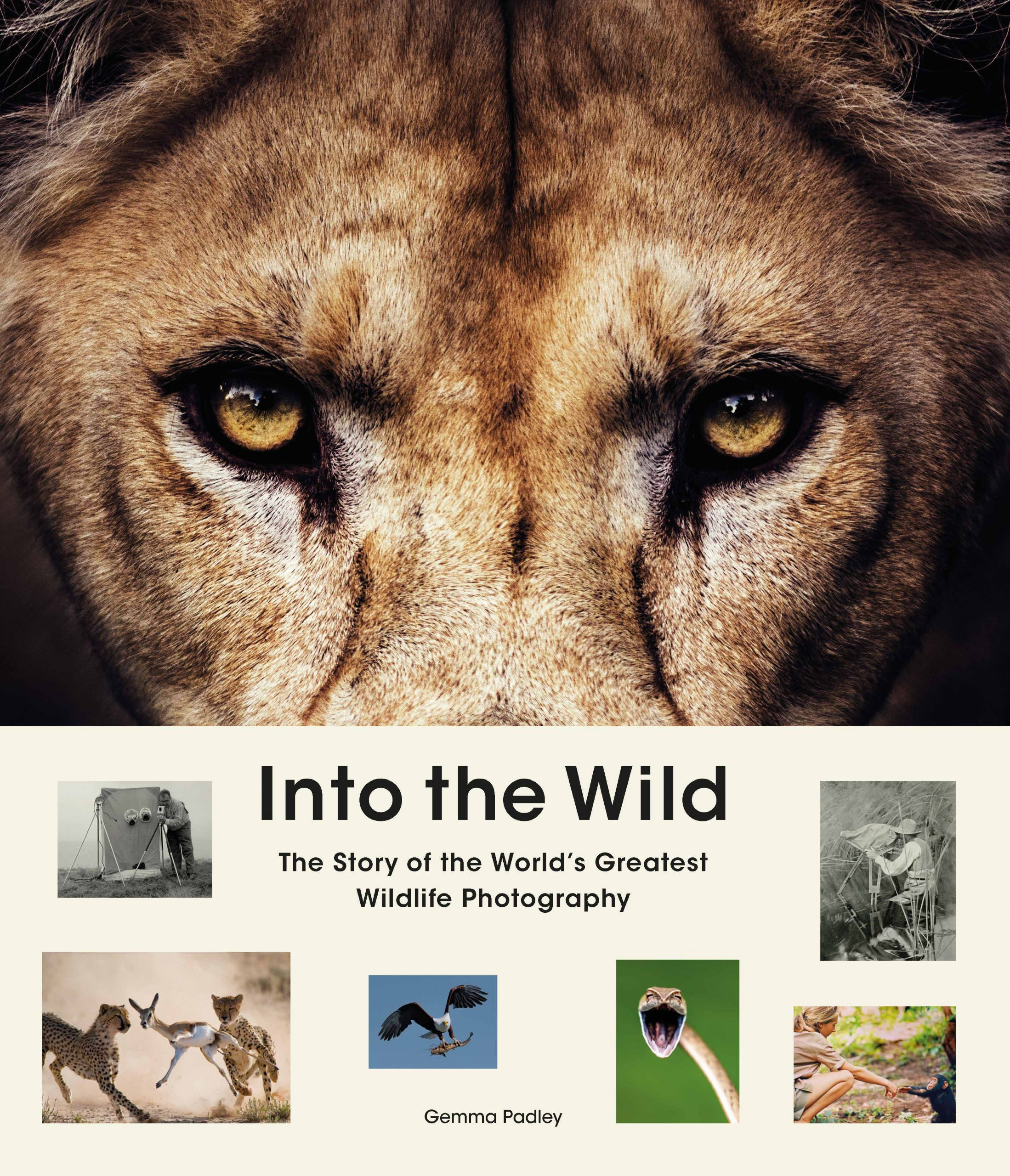 Into the Wild - Product Thumbnail